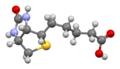 Biotin-view-2-from-xtal-Mercury-3D-balls.png