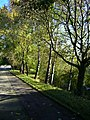 Birken an der Enz - panoramio.jpg