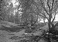 Björkö-Birka - KMB - 16001000034012.jpg