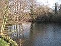 Black Dam Pond in winter - geograph.org.uk - 634546.jpg