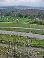 Blick vom Lemberg (365 m über NN, Von den Franken zu Beginn des 6. Jahrhunderts als auffallender Grenzpunkt gegen die Alemannen ausgewiesen) - panoramio.jpg