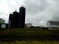 Blue Star Dairy - panoramio.jpg
