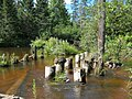 Bluff Creek - panoramio (1).jpg