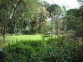 Blythcliffe garden2.jpg