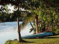 Boat Under Palms (23356016290).jpg