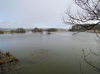 Stepenitz (Trave) - Image: Boerzow Stepenitz Hochwasser 2010 03 03 071