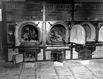 Responsibility for the Holocaust - Bones of murdered prisoners in the crematoria in the German concentration camp at Weimar, Germany in a photo taken by the 3rd U.S. Army on 14 April 1945
