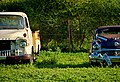 Bonnington farms, Gaborone, Botswana line of symmetry on vintage cars.jpg