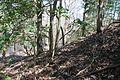 Boones Mounds, Arkansas DSC 0895 (8565797118).jpg
