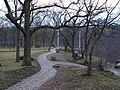 Bornich, Germany - panoramio (14).jpg
