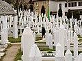 Bosnien 3972 (5552353149).jpg