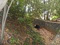 Bosque del Adelantado 5.JPG