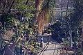 Botanischer Garten der Universität Zürich nach Umbau 2014-03-08 14-27-41.JPG