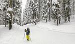 File:Brave hiker (25114285545).jpg