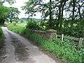 Bridge Beck Lane - geograph.org.uk - 856774.jpg