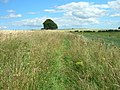 Bridleway near Fairy Dale - geograph.org.uk - 1414468.jpg