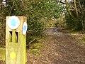 Bridleway to Fowls Copse - geograph.org.uk - 1775090.jpg