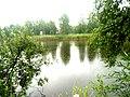 Brodivs'kyi district, Lviv Oblast, Ukraine - panoramio (114).jpg