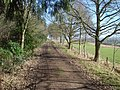 Bromesberrow Estate Track - 3 - geograph.org.uk - 733330.jpg