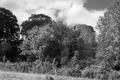 Bronllys Castle 11.tif
