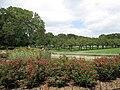 Brooklyn Botanic Garden 3.JPG