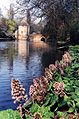 Brugge waterkant.jpg