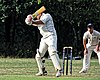 Buckhurst Hill CC v Dodgers CC at Buckhurst Hill, Essex, England 12.jpg
