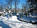 Bucuresti, Romania, Cimitirul Bellu Catolic (Morminte intr-o zi de iarna foarte geroasa)(2).JPG