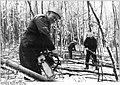 Bundesarchiv Bild 183-1982-0127-010, Zietlitz, Sturmschäden, Forstarbeiter.jpg