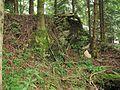 Burgstall Wachsenegg GO-4.jpg