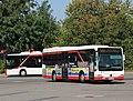 Busse der Uckermärkischen Verkehrsgesellschaft, Schwedt-Oder, 2020.jpg