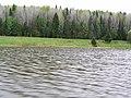 Bykovsky Bay in spring. Быковский залив весной, Пермский край, Россия - panoramio.jpg