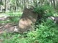 CCC Camp S125 Pa Ruins.jpg