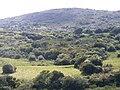 CERRO GUAZUBIRA - panoramio.jpg