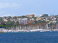CSIRO ScienceImage 8279 Rushcutters Bay Sydney New South Wales.jpg