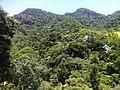 Cachoeiras de Macacu - State of Rio de Janeiro, Brazil - panoramio (24).jpg