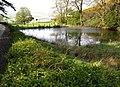 Caigton Pond - geograph.org.uk - 791596.jpg