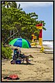 Cairns Palm Cove NQld-01 (11970789353).jpg