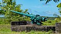 Cannon near Fort Nieuw Amsterdam in Suriname (31144999441).jpg