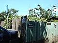 Capidava-Podarului - panoramio.jpg