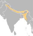Capricornis thar.png