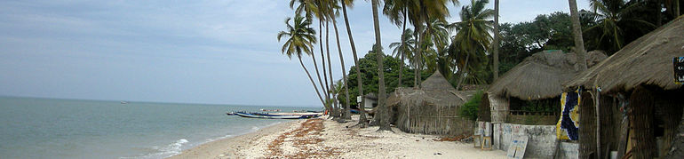 A shoreline showing several coconut trees and a few small houses