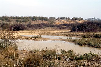 Michelmersh - Image: Casbrook Common 1