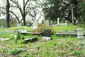 Cemeterybeauty.JPG