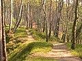 Cesta ke skalce - panoramio.jpg
