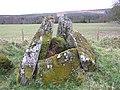 Chambered grave site at Ballyrenan (1) - geograph.org.uk - 1176712.jpg