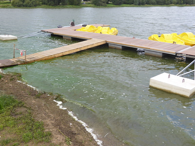 Pédalos sur l'étang de Châtillon en Vendelais (35)