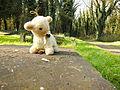 Chenstochov ------- Jewish Cemetery of Czestochowa ------- 208.JPG