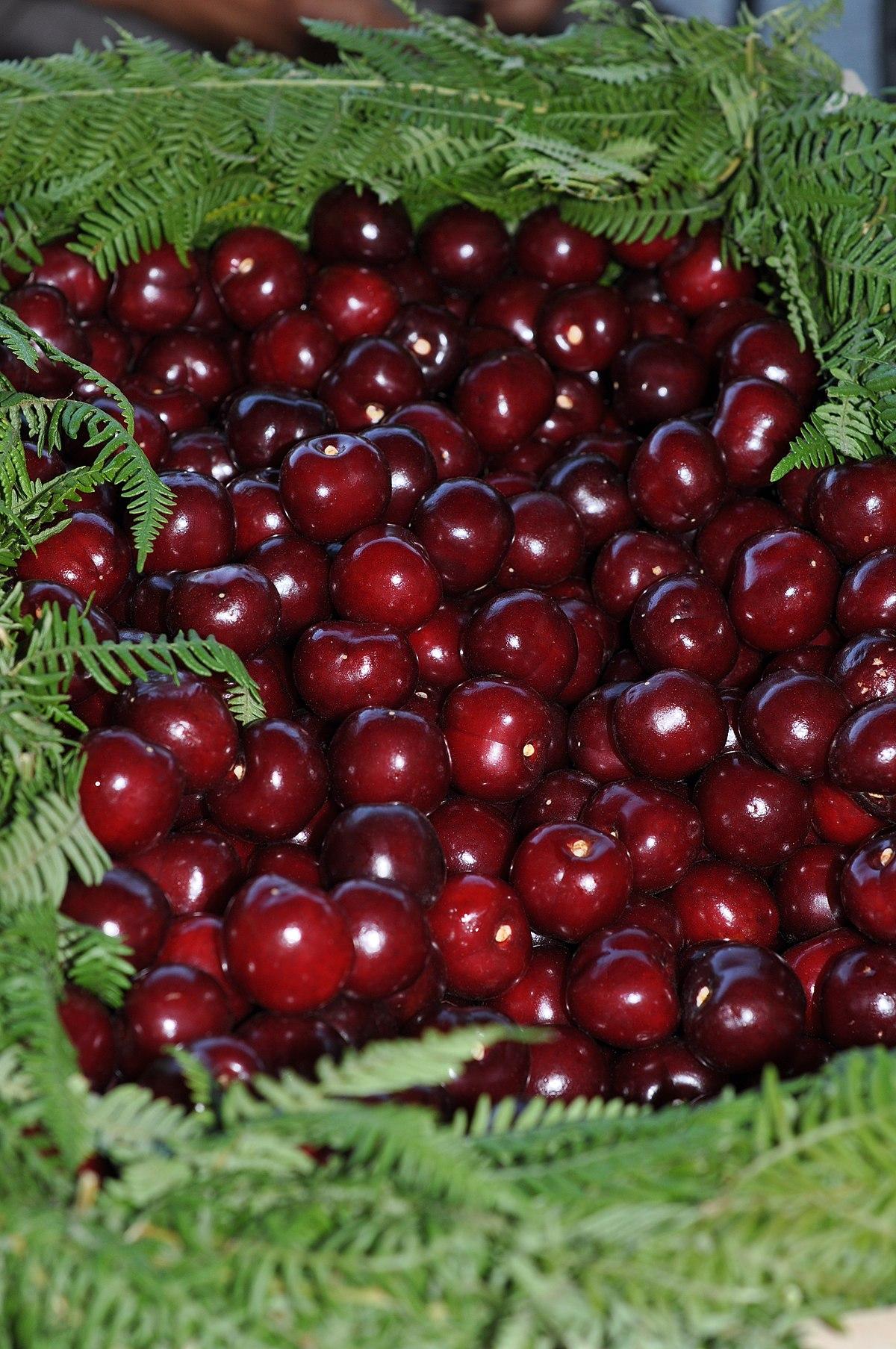 Cherries cerezas Valle del Jerte 01.JPG