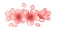 Cherry blossom divider by ksanya-d8lh8yw.png